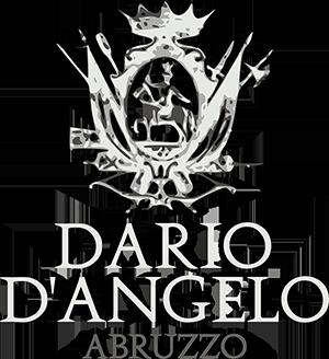 Logo DARIO D'ANGELO classic bianco